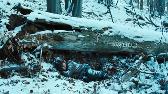 Biegnij, Chłopcze, Biegnij / Lauf, Junge, Lauf (2013) Film Polski (362p)